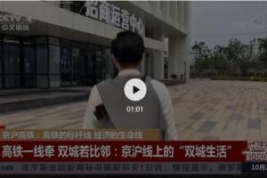 央视报道,步步高·稻谷产业园火了!